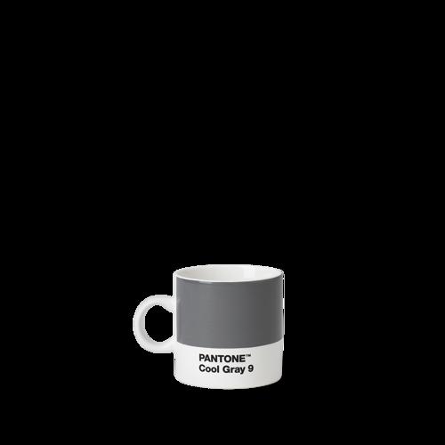 Pantone Espresso Cool Gray 9